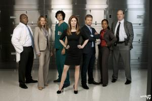 Body of Proof Cast: Windell Middlebrooks, Jeri Ryan, Geoffrey Arend, Dana Delaney, Nicholas Bishop, Sonja John and John Carroll Lynch