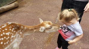 Wait, Bambi is eating me! MUMMY!